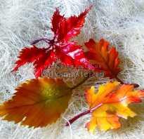 Осенние открытки с листьями своими руками. Мастер-класс