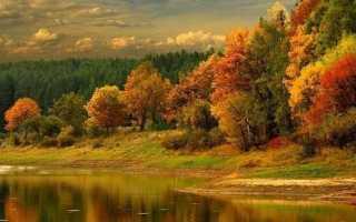 Осенний подсвечник своими руками. Мастер-классы